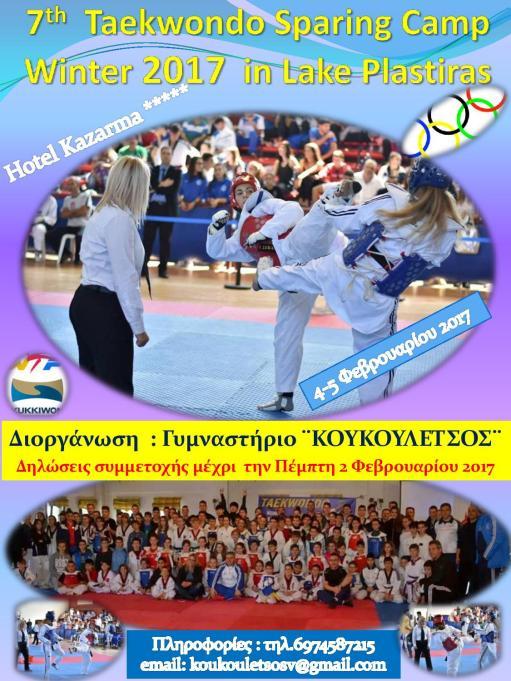 7th-taekwondo-sparing-camp-page-001